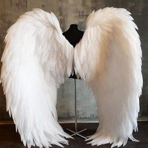 Angel/Fairy Wings